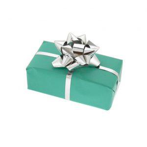 Manton Silver Fountain Pen & Gift Box with Free Engraving